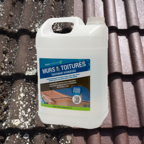Hydrofuge anti lichens et anti mousses pour façades et tuiles